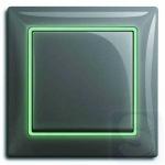 Декоративная вставка ABB Basic 55 флуорисцентная (светится в темноте)