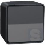 Выключатель универсальный Mureva Styl IP55 Графит накладной